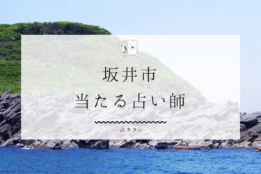 【最新版】坂井市の当たる占い3選!!口コミ&調査で徹底レポ!!