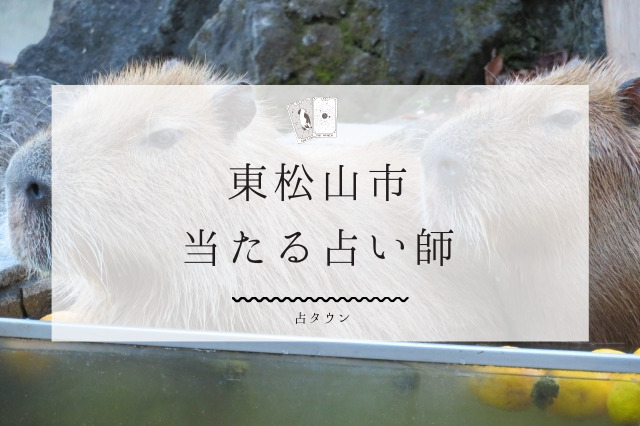 東松山市の当たる占い師